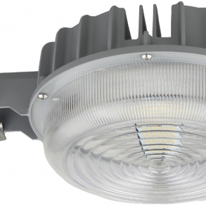 Security Light 55W 5000K
