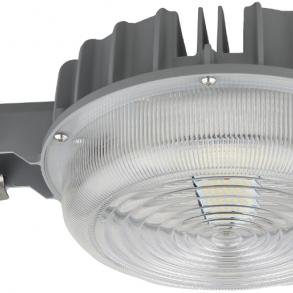 Security Light 55W 5000K